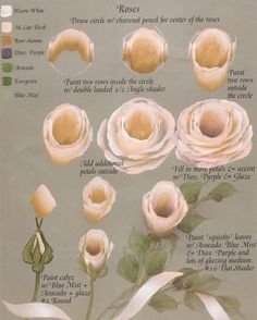 One STROKE______Rose tutorial by Ros Stallcup from her book, Gran's Travels. China Painting, Tole Painting, Painting Flowers, Painting Lessons, Painting Tips, Painting Tutorials, Donna Dewberry Painting, Rose Tutorial, One Stroke Painting