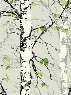 Green Birch Trees with Leaves Wallpaper, SBK26877
