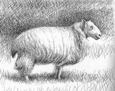 Henry Moore - sheep