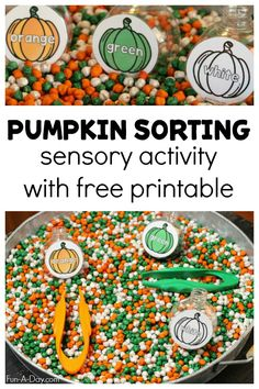 A fun sensory activity for preschoolers this fall - free printable included! As an added bonus, this activity also works fine motor skills and reinforces early math. Sensory Activities For Preschoolers, Early Learning Activities, Sorting Activities, Color Activities, Fall Crafts For Toddlers, Autumn Activities For Kids, Holiday Activities, Sensory Bins, Sensory Play