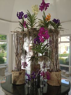 A beautiful orchid display in the glass link, courtesy of @?? ?? Kvaløy Olsen Designs !