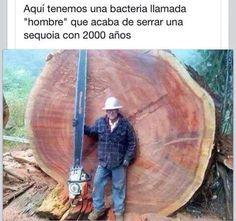 #crueldad