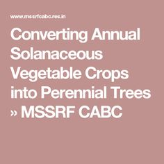Converting Annual Solanaceous Vegetable Crops into Perennial Trees Eggplant, Perennials, Trees, Vegetables, Tree Structure, Eggplants, Vegetable Recipes, Perennial, Wood
