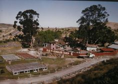 Old McDonald's Farm, MV