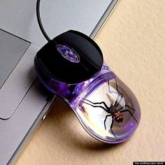 I wouldn't be comfortable working with this :(  The most horrifying computer mouse we've ever seen: http://huff.to/N57n4B