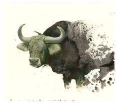 Sam Weber - bull
