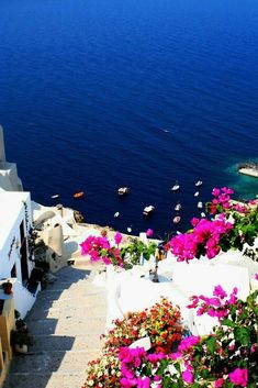 Greece Travel Inspiration -Santorini - Ammoudi Harbor From Oia Places Around The World, The Places Youll Go, Places To See, Around The Worlds, Dream Vacations, Vacation Spots, Places To Travel, Travel Destinations, Greece Destinations