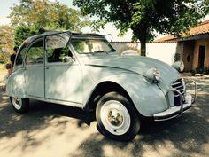 1966 couleur gris Dandy
