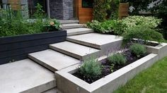 modern landscaping integrated into the concrete limestone finish patio