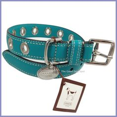COACH ~ Blue Grommet Leather Dog Collar ~ Medium