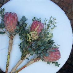 Statement bloom bouquets featuring crimson protea #petalandpistiloriginal