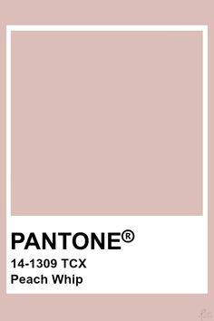 Pantone Cameo Rose Pantone colo palette for art and home decor Colour Pallete, Colour Schemes, Color Patterns, Beige Color Palette, Pantone Swatches, Color Swatches, Pantone Colour Palettes, Pantone Color, Beige Pantone