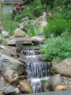 Tranquil Water Gardens' Blog