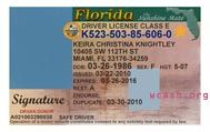 Template florida drivers license editable photoshop file .psd