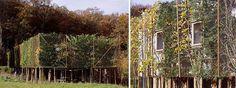 Image result for duncan lewis garden  vertical