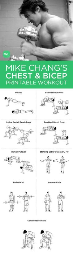 Biceps Workout Chart For Men Mike Changs Actual Chest And