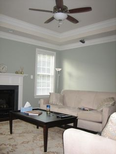 Crown Molding Trey Ceiling