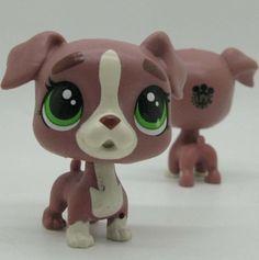 Littlest Pet Shop 2016 Loose Figures  2'' CALLA BOXTON Boxer Dog NA72L