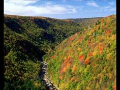 River Blackwater River From Pendleton Overlook West Virginia - Autumn Wallpaper Nature Collection, Natural Resources, Science And Nature, West Virginia, Cool Photos, Amazing Photos, Scenery, Earth, America