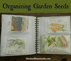Seed packet organization