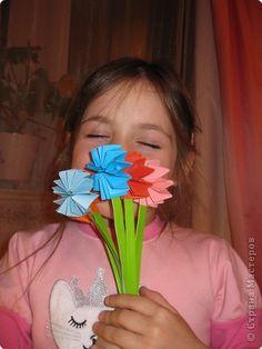 bloemen van muizentrappetjes