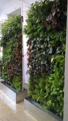 Jardin vertical desmontable