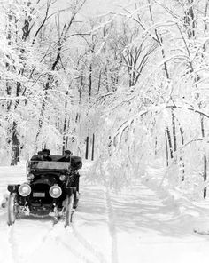 Snowy day for a ride on Belle Isle in Detroit, MI, early 1900's