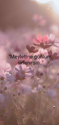Story Video, Man In Love, Instagram Story, Religion, Letters, Album, Nirvana, Karma, Istanbul