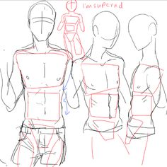 ALMOST AS COOL AS U, Can you show how you go on simplifying the shapes of a male vs female body when you have the time pweese. Mainly the torso? I love you