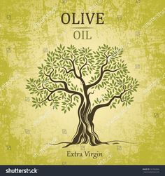image.shutterstock.com z stock-vector-olive-tree-on-vintage-paper-olive-oil-vector-olive-tree-for-labels-pack-161062064.jpg