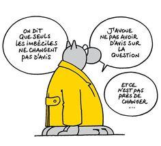 """Le Chat """" imbécile """""""