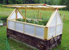 Greenhouses - Recyle Old Material for Plants - Extend Growing Times A raised garden bed with a greenhouse cover can help you extend your growing season.A raised garden bed with a greenhouse cover can help you extend your growing season. Greenhouse Cover, Greenhouse Plans, Greenhouse Gardening, Cheap Greenhouse, Greenhouse Wedding, Homemade Greenhouse, Indoor Greenhouse, Underground Greenhouse, Portable Greenhouse