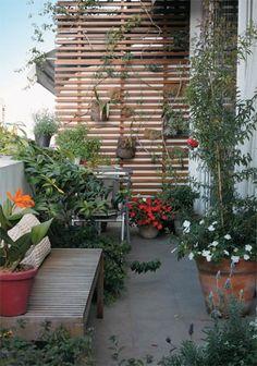 Garden on a terrace rye grass- divider-4310