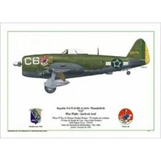 "Republic P-47D-25-RE Thunderbolt ""C6"" - Blue Flight P 47 Thunderbolt, Aviation Art, Ww2, Art Sketches, Brazil, Fighter Jets, Aircraft, Mexico, Military"