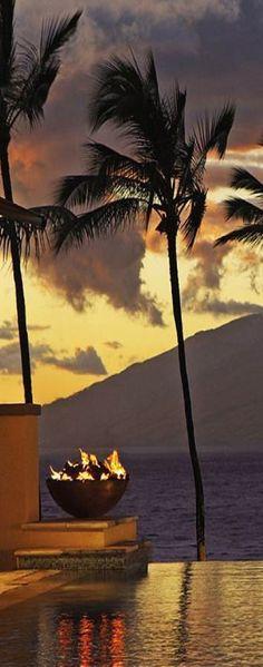 Palm Trees at the Four Seasons Maui
