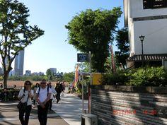 上野到着。不忍池。あの「空」に期待。
