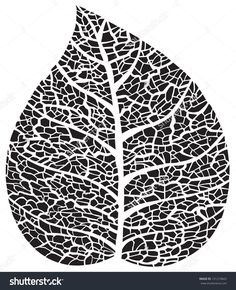 leaf black and white. black leaf silhouette on white background. and d