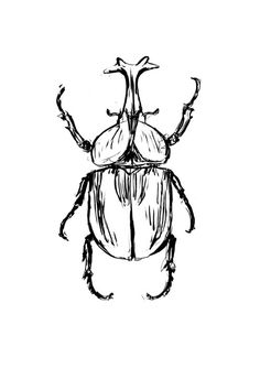 Beetle Tattoo, Bug Tattoo, Insect Tattoo, Tattoo Outline, Bugs Drawing, Beetle Drawing, Cute Tattoos, Small Tattoos, Palm Size Tattoos