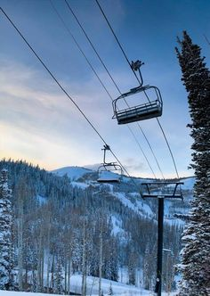 Going skiing in Deer Valley? Book your next ski holiday and discover the skiing in Deer Valley - Ski on the Olympic slopes in the heart of Utah! Deer Valley Ski Resort, Go Skiing, Ski Holidays, Ski Lift, Yearly, Hotels And Resorts, Easy Access, Winter Wonderland, Olympics