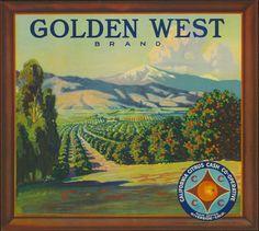 Citrus Label Collection / Golden West Brand.jpg