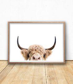 Highland Cow Print Farm Animal Wall Art Digital Download