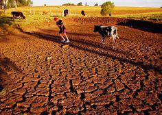 Sertão nordestino http://1.bp.blogspot.com/-E_pe_d3i7fI/T7q_J3dSabI/AAAAAAAAAVw/R9jMxtrETQU/s1600/sert%25C3%25A3o.jpg