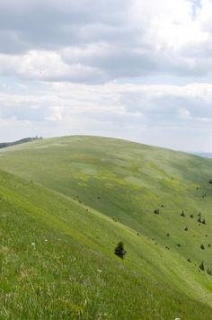 Veľká Fatra - Slovakia Trekking, Most Beautiful, Earth, Mountains, Nature, Naturaleza, Nature Illustration, Off Grid, Bergen
