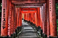 Afbeeldingsresultaat voor kyoto
