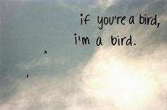the notebook quotes | freedom, quote, the notebook, typhography - inspiring picture on Favim ...