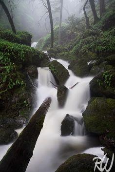 Cataract Falls, Mount Tamalpais Watershed, Marin County, California  #waterfalls #nature