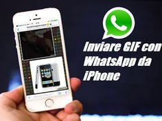 UNIVERSO NOKIA: Inviare GIF con WhatsApp da iPhone