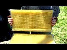 Bench Test Flow Frame - YouTube (τεχνική εξαγωγής μελιού απευθείας απ την κυψέλη με κατάλληλα πλαίσια)