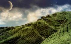 hills - Google Search