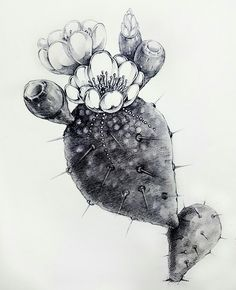 cactus, jewelry_painting